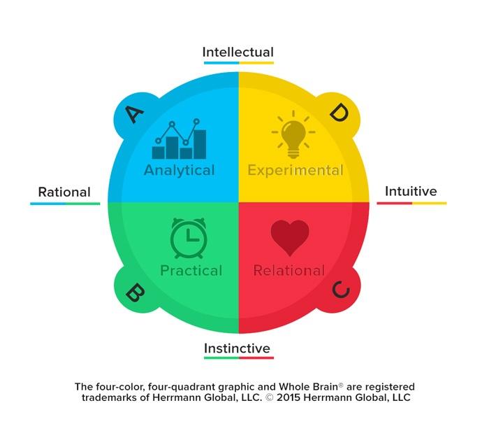 Herrmann Four Quadrant Whole Brain Model